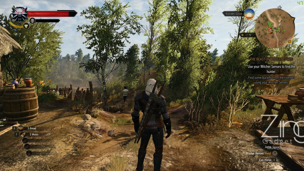 the witcher 3-01